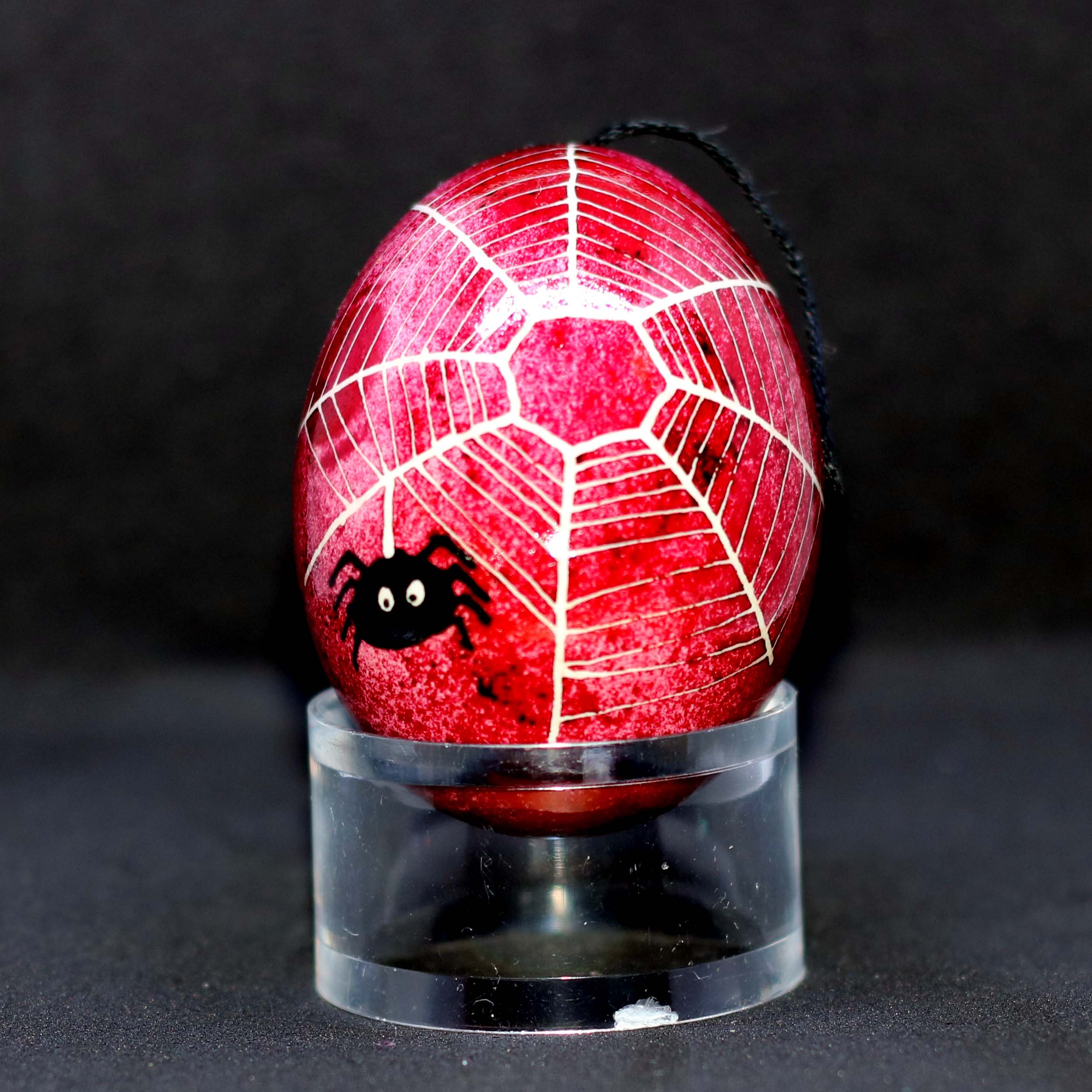 Spiders web egg, red background