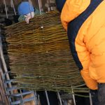Carefully remove hurdle rods from bale